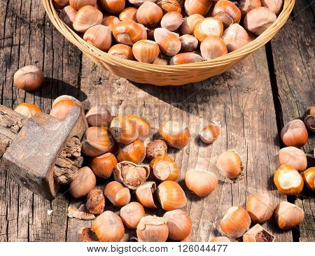 Hazelnut and old hammer on the wooden table from above