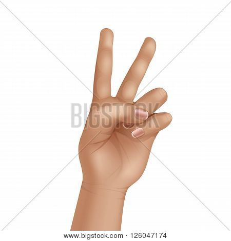 Victory Peace Sign Gesture Hand Isolated on White Background