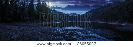 view on crystal clear lake with grassy shore near the pine forest at the foot of the mountain at night in full moon light