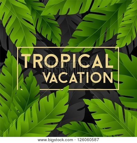 Tropical vacation card with banana palm leaves. Jungle leaves background.