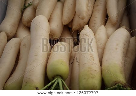 Stacks of daikon radishes for sale at a farmer's market.