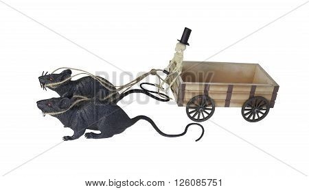 Skeleton Driving Cart Drawn by Rats - path included