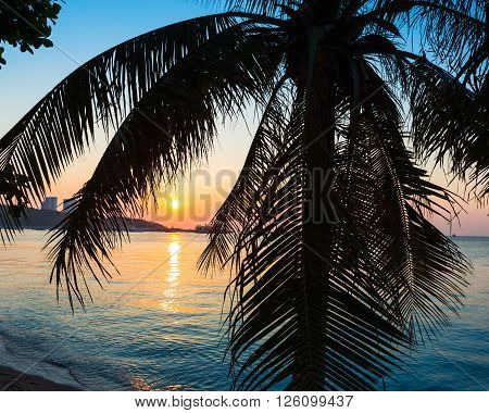 A view of a beach with palm trees at sunset. Thailand.