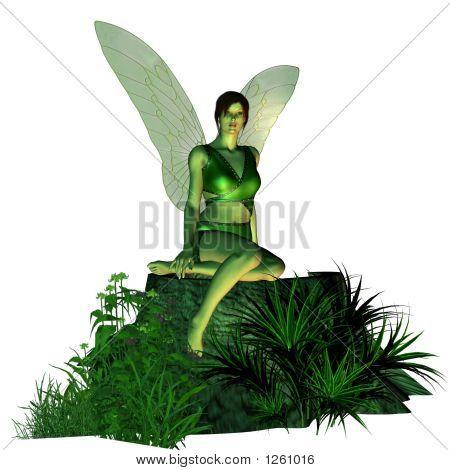 Fairy On A Tree Stump