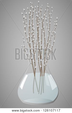 Willow branches in a clear vase, vector illustration