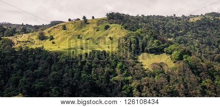 View of a deforested area in a mountain