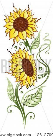 Summer time flowers, sunflowers, floral vector decoration.