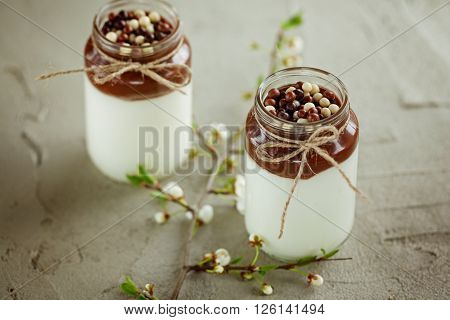 Glass of Homemade yogurt with chocolate mousse and  chocolate candy drops with spring branch on a concrete background