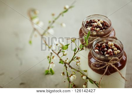 Homemade yogurt with chocolate mousse and  chocolate candy drops with spring branch