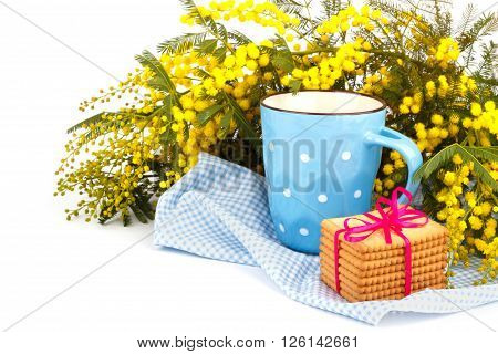 Mimosa flowers cup of tea and cookies on a blue cloth