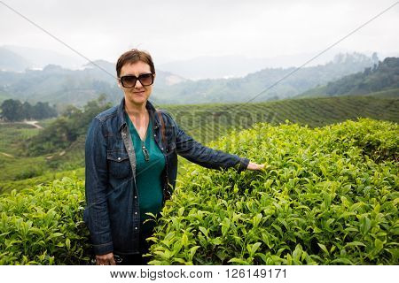 Woman is on the tea plantations in the mountainous district of Cameron Highlands, Malaysia.