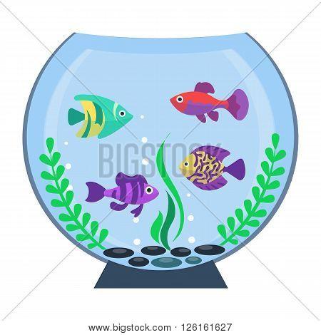 Flat vector aquarium. Colorful bright fish in the aquarium. Underwater life. Cute fish illustration