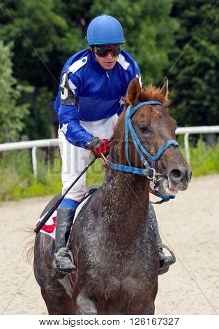 Horse Racing of the prize Derby in Pyatigorsk.