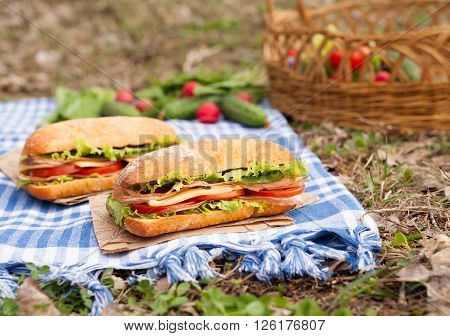 Traditional ciabatta bread sandwich lifestyle picnic lunch with vegetables, bacon, salad, cheese and onion