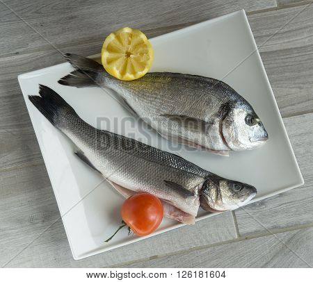 two whole raw fish on a white plate