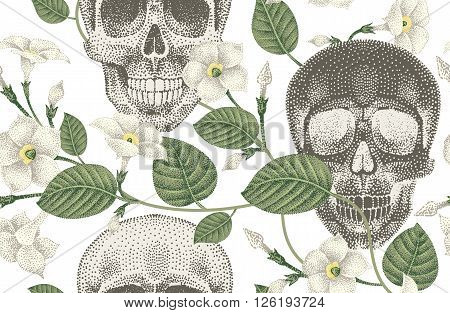 Human skulls and devil's guts. Seamless vector pattern. Illustration of natural organic elements skulls and flowers ivy on a white background.