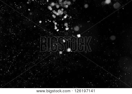 Snow flakes on dark background