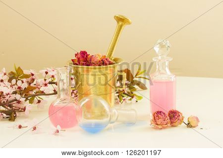 Dry flowers, mortar and bottles of potions, herbal medicine