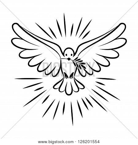 Flying dove vector sketch. Dove of Peace. Silhouette of a flying dove with olive branch. White dove bird dove white pigeon doodle. Vector illustration