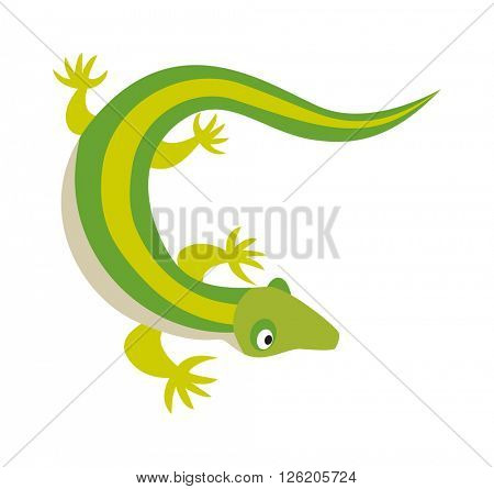 Green water dragon lizard nature animal reptile cartoon silhouette vector illustration.