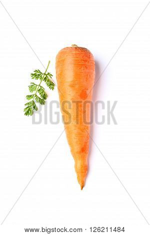 Carrot with leaves isolated on white background.