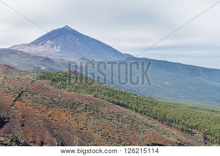 Morning mist covered the valley at the foot of the volcano Teide on Tenerife.