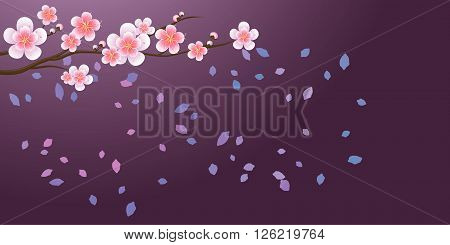 Branch of sakura with flowers. Cherry blossom branch with petals falling isolated on violet. Vector