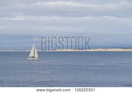 Sail boat on the sea at Monterey California
