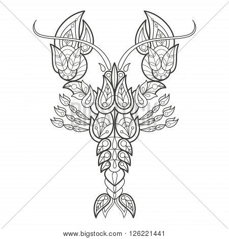 Vector illustration decorative sea cancer on white background. Fashion trend of adult coloration. Lobster vector with elements oriental motif Turkish cucumber. Black and white. Modern vector design.