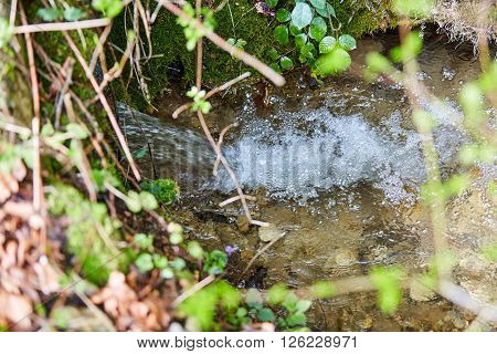 Small stream of water in the forest with a little waterfall
