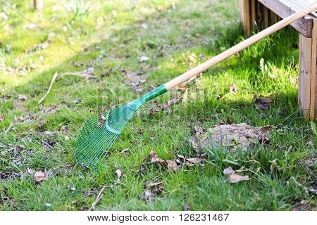 green rake on the grass with wooden bench - prepared for gardening