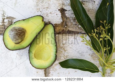 fresh green cutted avocados on rustic wooden background