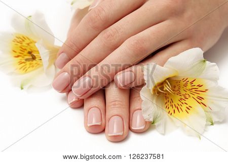 Woman hands with beautiful manicure and white lily on white background, close up