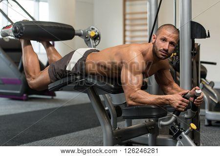 Health Club Lying Leg Curls Exercises