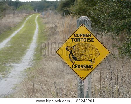 LEESBURG, FLORIDA - February 22: on February 22, 2016, a sign indicates gopher tortoise territory and conservation at PEAR Park in Leesburg, Florida.
