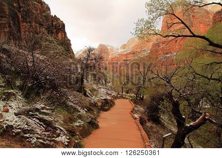 Weeping Window Trail in Zion National Park, Utah