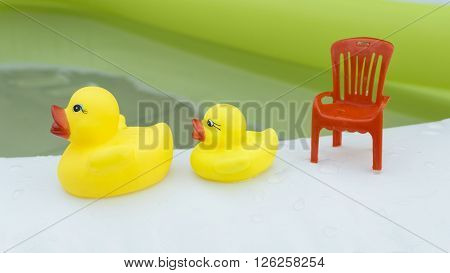 Family Rubber Duck Swimming Water