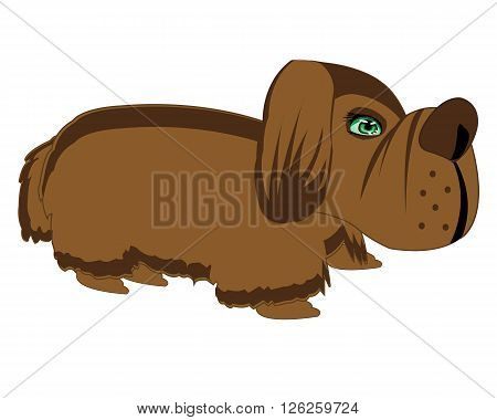Illustration of the dog on white background is insulated