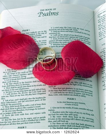 Bible And Rings 5