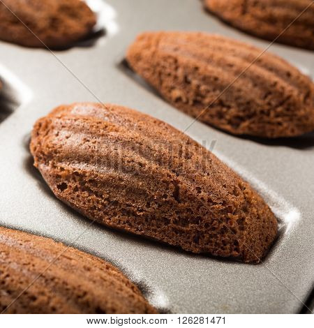 Homemade chocolate madeleines cookies in a special madeleine mold, selective focus