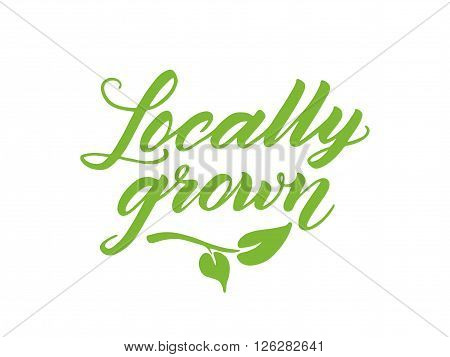 Locally grown hand drawn brush lettering. Label, logo template isolated on white background.