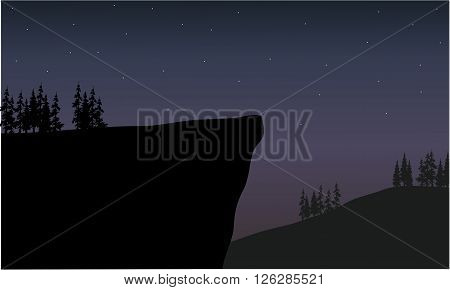silhouette of cliff at night scenery with fir trees