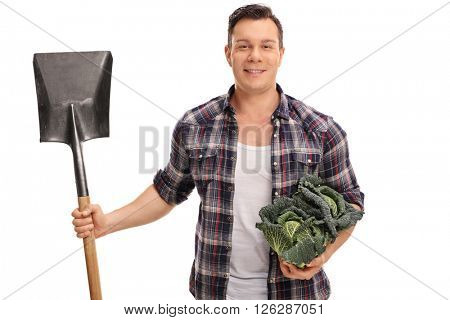 Agricultural worker holding a Savoy cabbage and a shovel isolated on white background