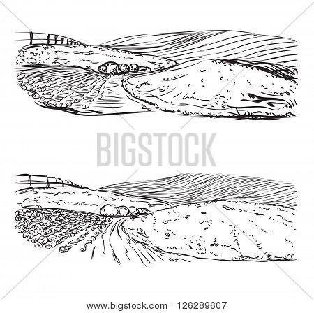 Hand drawn landscape sketch. Village and field