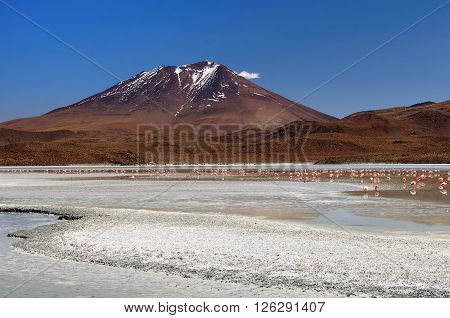 South America - The surreal landscape in the Eduardo Avaroa National Reserve of Andean Fauna near Chilean border. Lagoon Canapa