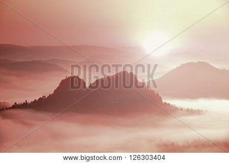 Pink Daybreak In Landscape. Misty Morning In A Beautiful Hills.