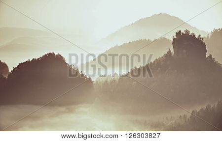 Pink Daybreak In Landscape.  Misty Morning In  Beautiful Hills. Peaks Of Hills In  Fog
