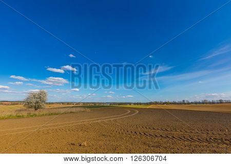 Spring Plowed Field Under Blue Sky With Clouds