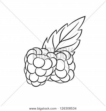 Raspberries. Vector hand drawn raspberries illustration isolated on white background - stock vector