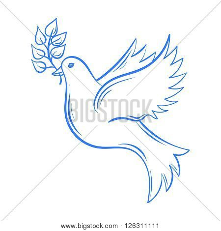 Vector Dove. Hand drawn Dove of Peace illustration, dove with olive branch. Hand drawn artistically decorative flying dove. Postcard for international peace day. Pigeon bird.